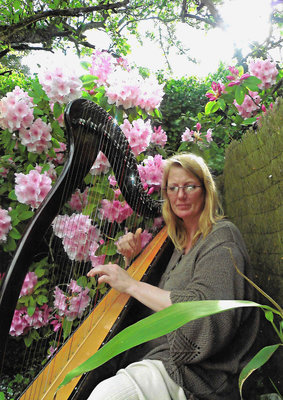 Professeur de harpe, piano et flûte à bec à l'EMION